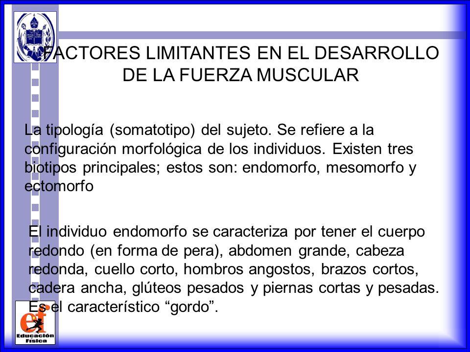 FACTORES LIMITANTES EN EL DESARROLLO DE LA FUERZA MUSCULAR