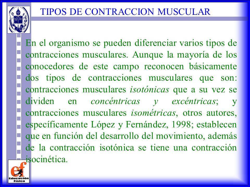 TIPOS DE CONTRACCION MUSCULAR