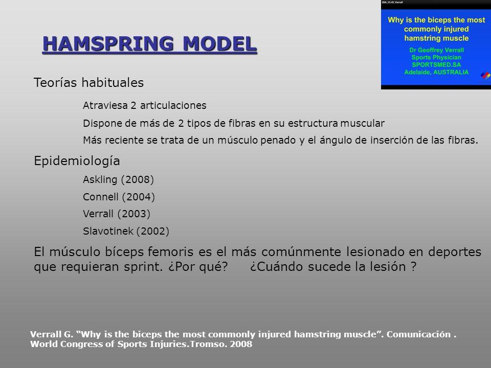HAMSPRING MODEL Teorías habituales Atraviesa 2 articulaciones
