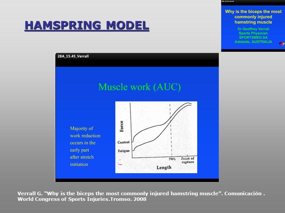 HAMSPRING MODEL