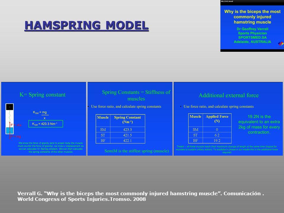 HAMSPRING MODEL Por tanto habría que demostrar que el músculo bíceps femoral es el que más participa en la locomoción de los.