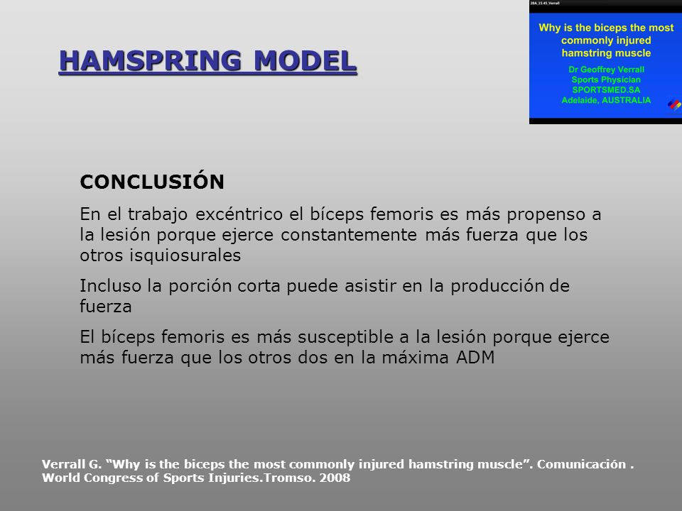 HAMSPRING MODEL CONCLUSIÓN