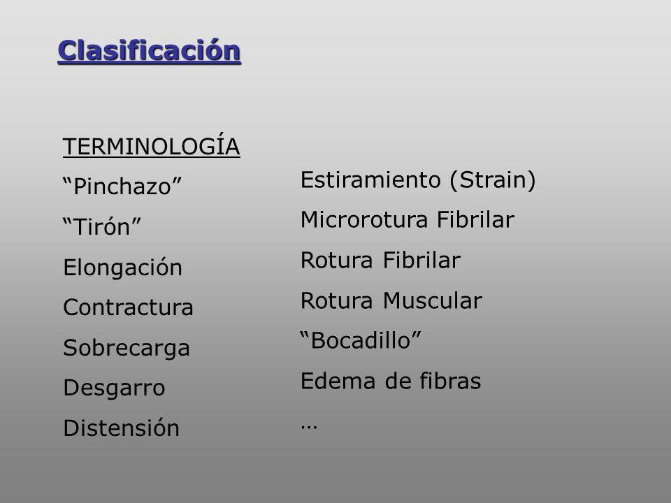 Clasificación TERMINOLOGÍA Pinchazo Tirón Estiramiento (Strain)