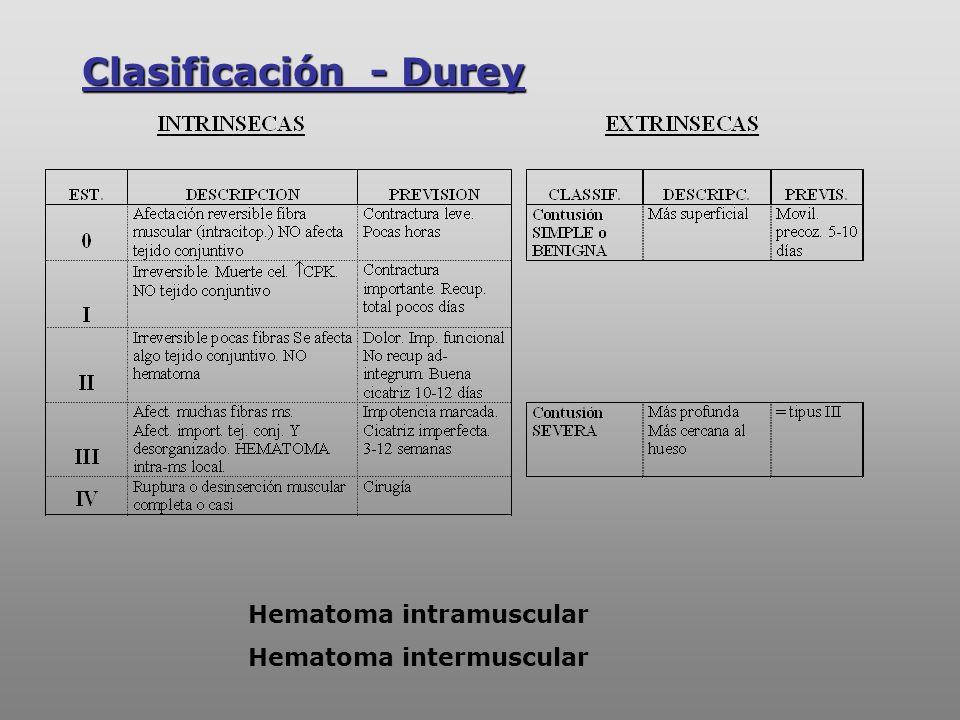 Clasificación - Durey Hematoma intramuscular Hematoma intermuscular