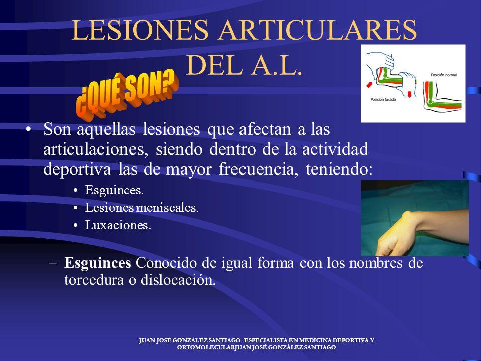 LESIONES ARTICULARES DEL A.L.