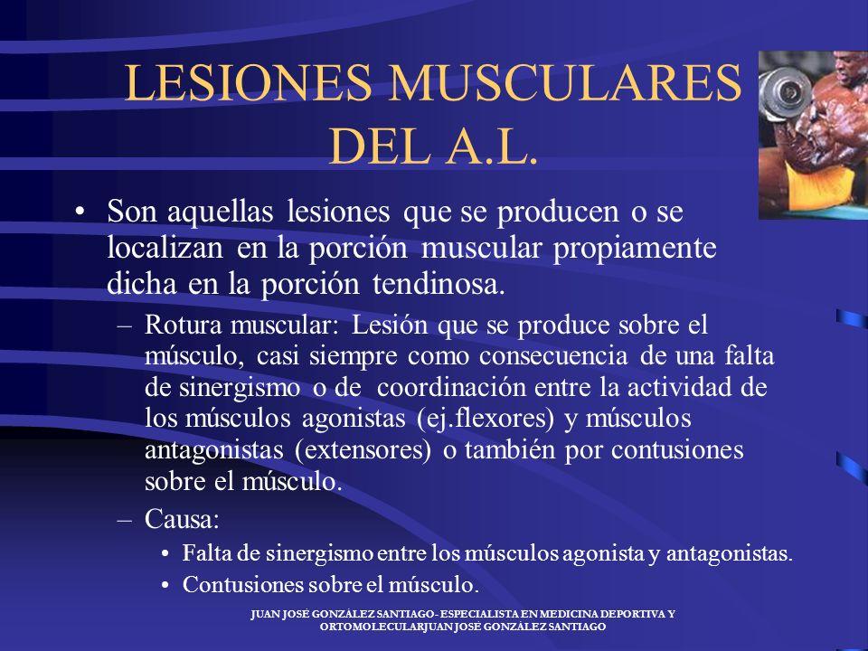 LESIONES MUSCULARES DEL A.L.