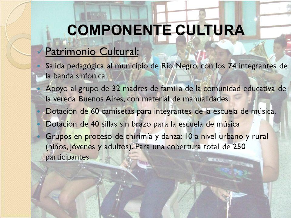 COMPONENTE CULTURA Patrimonio Cultural: