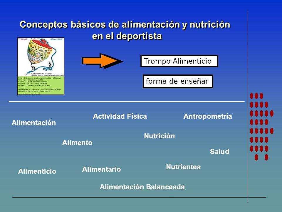 Conceptos básicos de alimentación y nutrición en el deportista