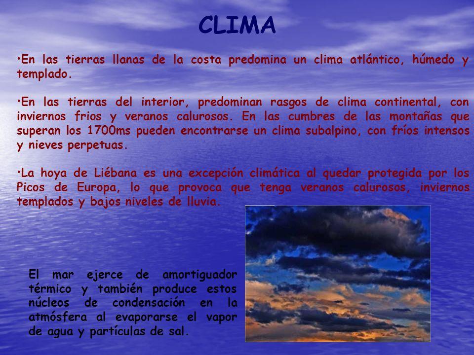 CLIMA En las tierras llanas de la costa predomina un clima atlántico, húmedo y templado.