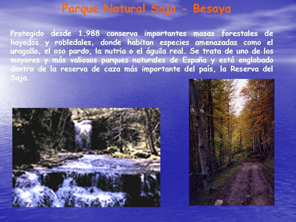 Parque Natural Saja - Besaya