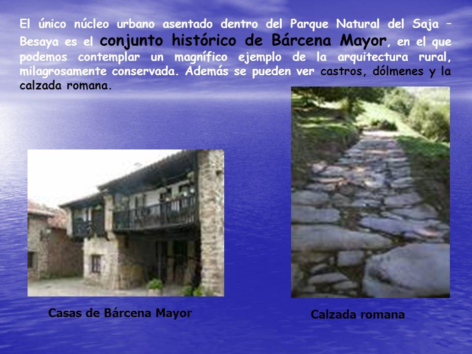 El único núcleo urbano asentado dentro del Parque Natural del Saja – Besaya es el conjunto histórico de Bárcena Mayor, en el que podemos contemplar un magnífico ejemplo de la arquitectura rural, milagrosamente conservada. Además se pueden ver castros, dólmenes y la calzada romana.