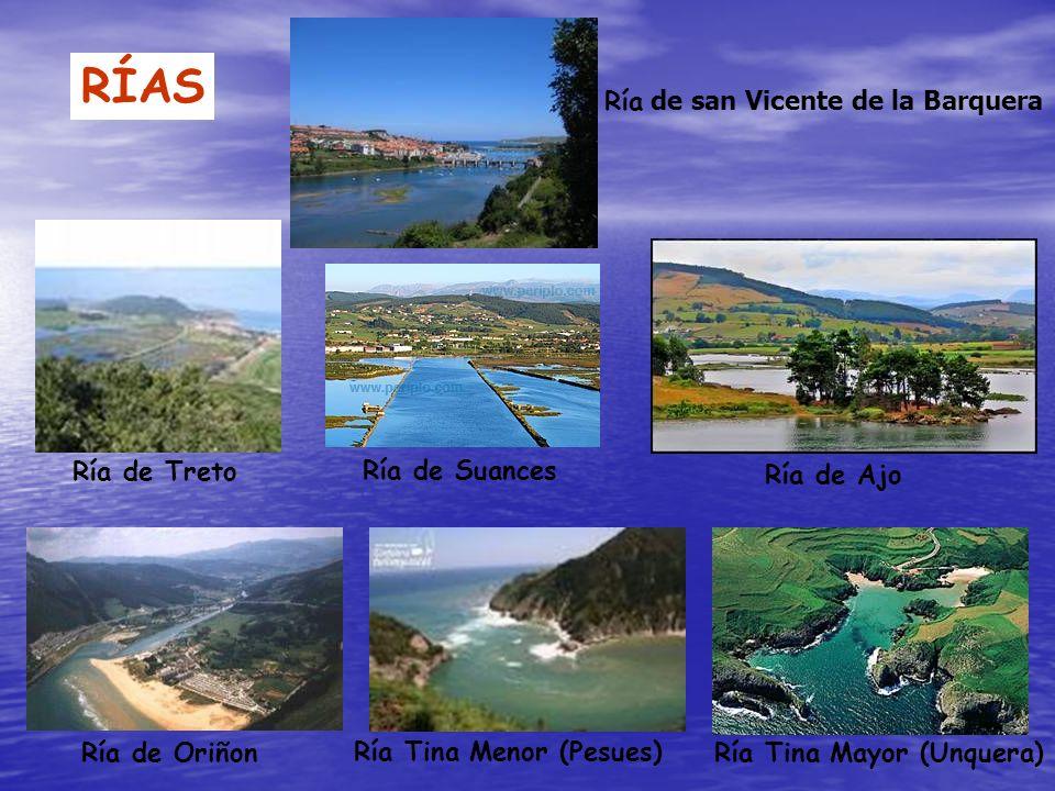 RÍAS Ría de san Vicente de la Barquera Ría de Treto Ría de Suances