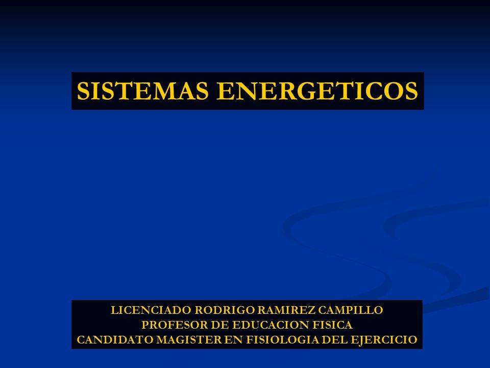 SISTEMAS ENERGETICOS LICENCIADO RODRIGO RAMIREZ CAMPILLO