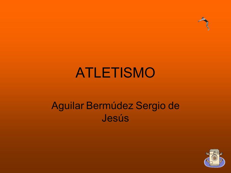 Aguilar Bermúdez Sergio de Jesús