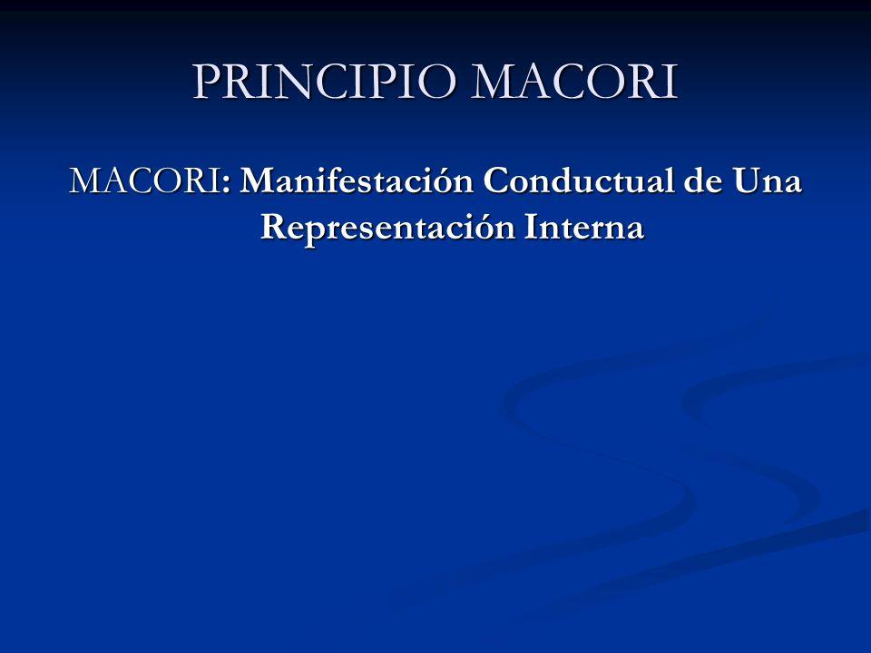 MACORI: Manifestación Conductual de Una Representación Interna