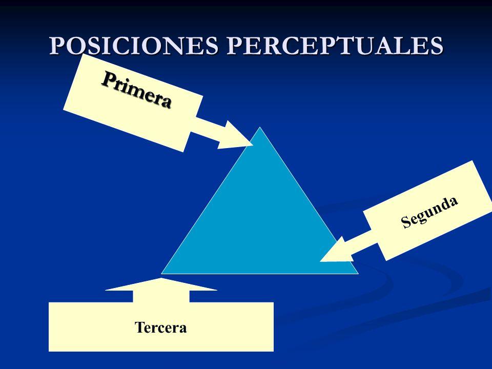 POSICIONES PERCEPTUALES