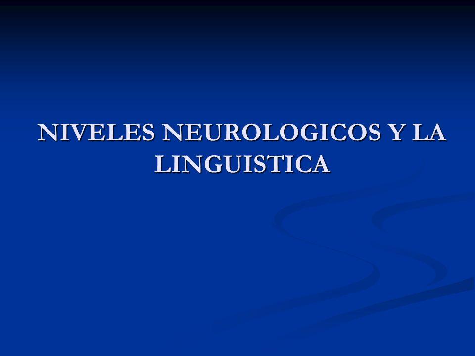 NIVELES NEUROLOGICOS Y LA LINGUISTICA