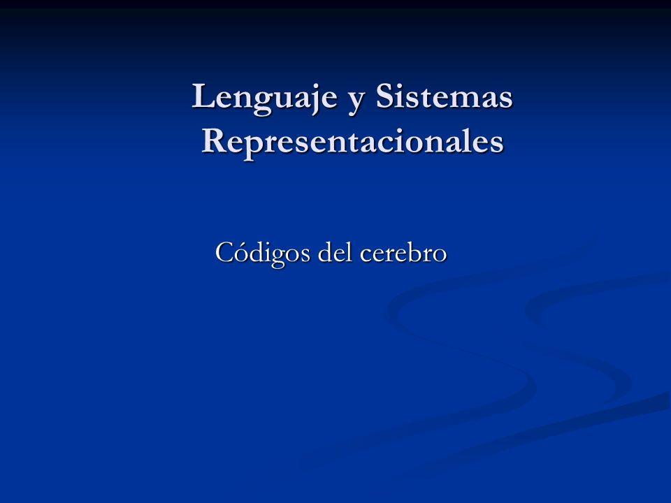 Lenguaje y Sistemas Representacionales