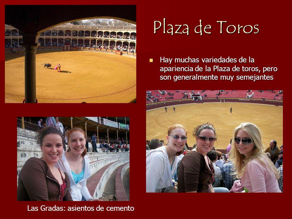 Plaza de Toros Hay muchas variedades de la apariencia de la Plaza de toros, pero son generalmente muy semejantes.