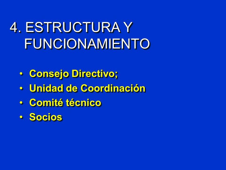 4. ESTRUCTURA Y FUNCIONAMIENTO