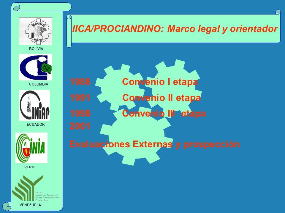 IICA/PROCIANDINO: Marco legal y orientador