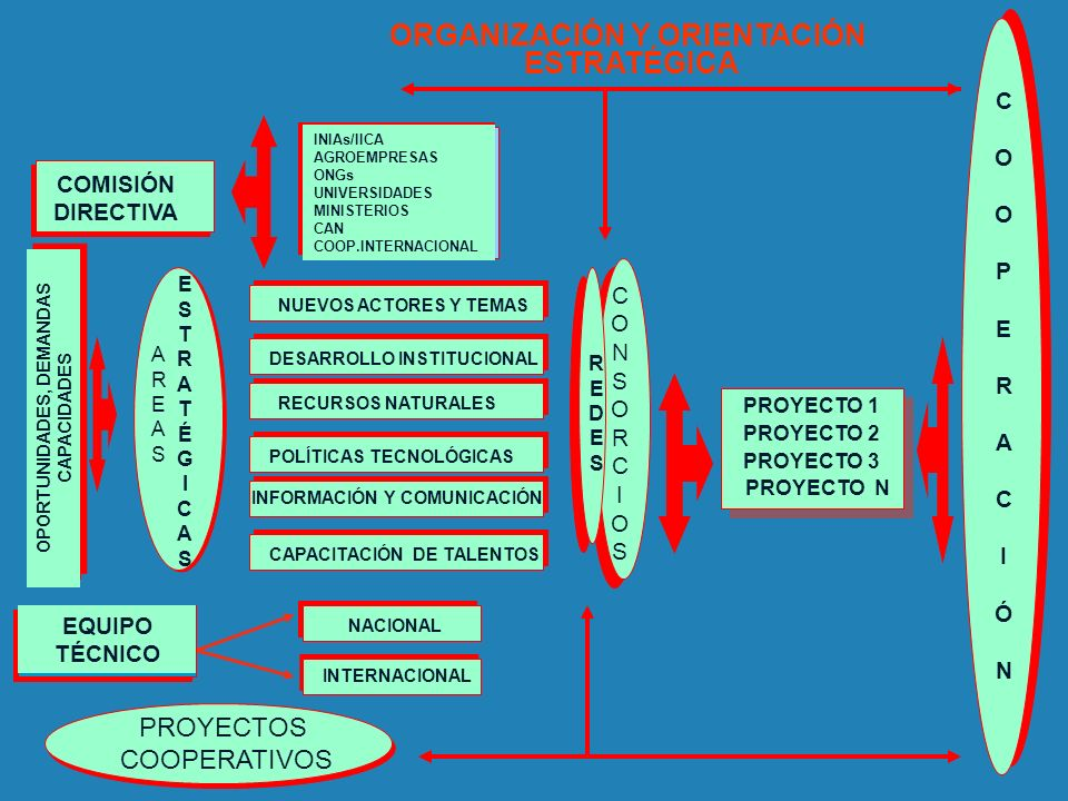 ORGANIZACIÓN Y ORIENTACIÓN OPORTUNIDADES, DEMANDAS