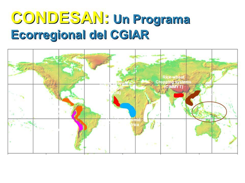 CONDESAN: Un Programa Ecorregional del CGIAR