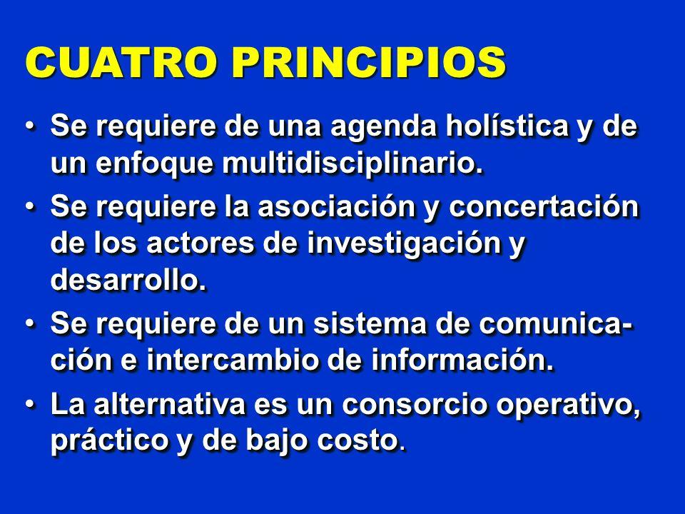 CUATRO PRINCIPIOS Se requiere de una agenda holística y de un enfoque multidisciplinario.