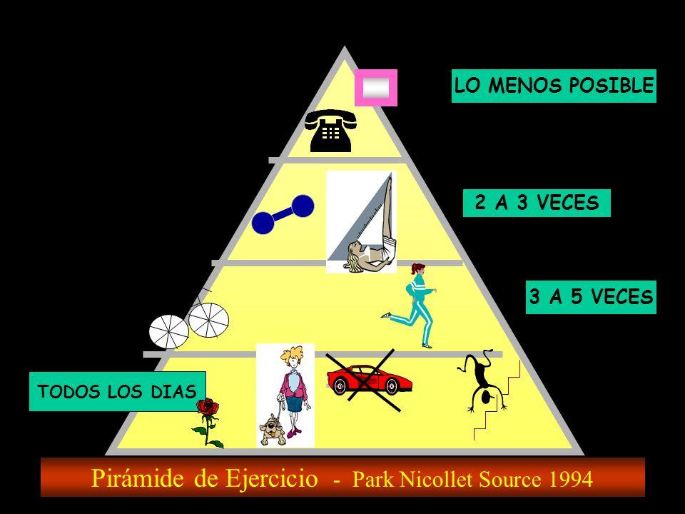 Pirámide de Ejercicio - Park Nicollet Source 1994