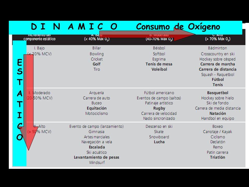 D I N A M I C O Consumo de Oxígeno