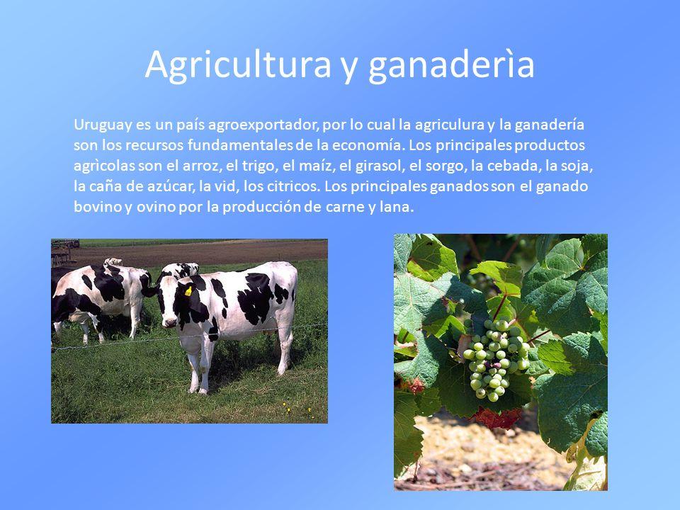 Agricultura y ganaderìa