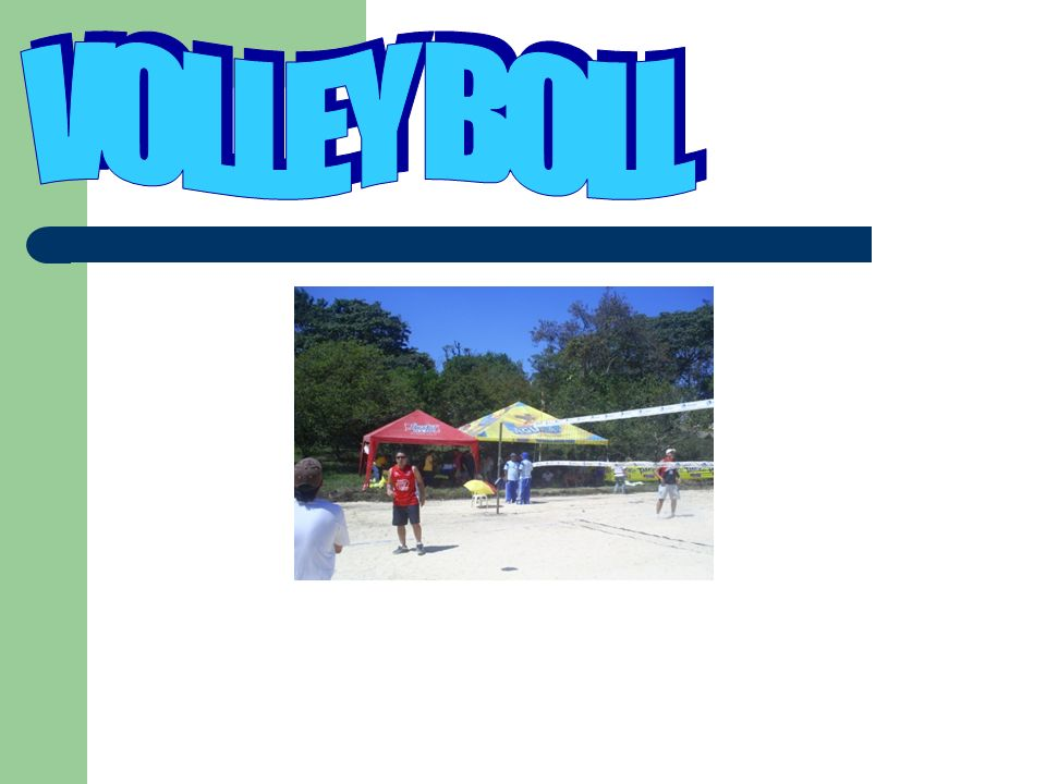 VOLLEY BOLL