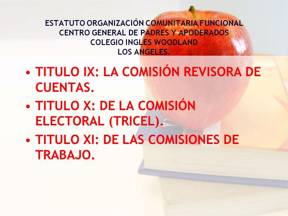 TITULO IX: LA COMISIÓN REVISORA DE CUENTAS.