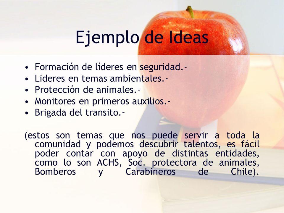 Ejemplo de Ideas Formación de líderes en seguridad.-