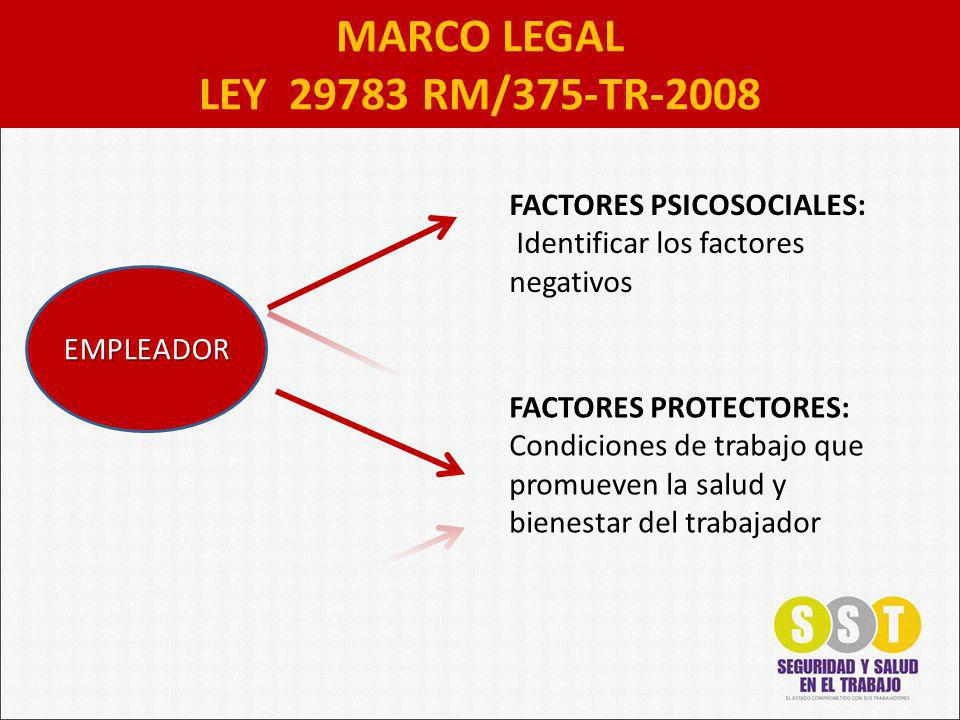 MARCO LEGAL LEY 29783 RM/375-TR-2008