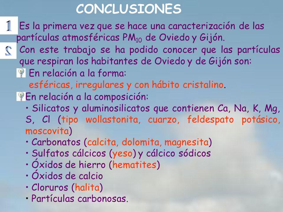 CONCLUSIONES Es la primera vez que se hace una caracterización de las partículas atmosféricas PM10 de Oviedo y Gijón.