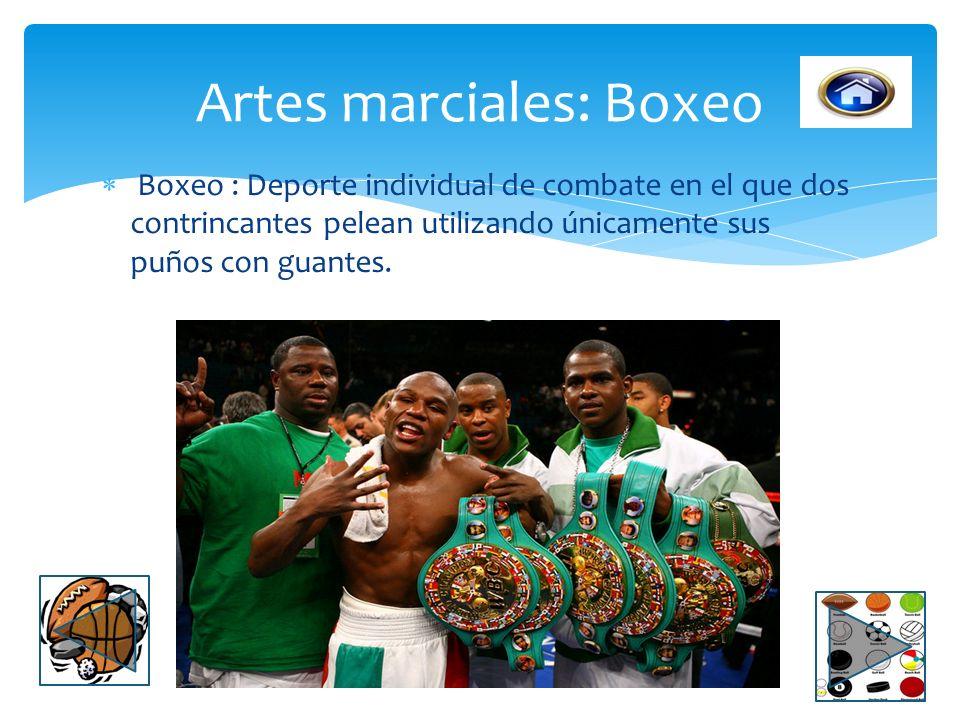 Artes marciales: Boxeo