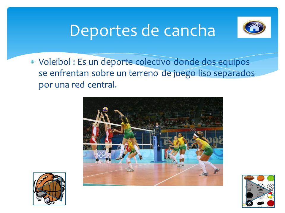 Deportes de cancha Voleibol : Es un deporte colectivo donde dos equipos se enfrentan sobre un terreno de juego liso separados por una red central.