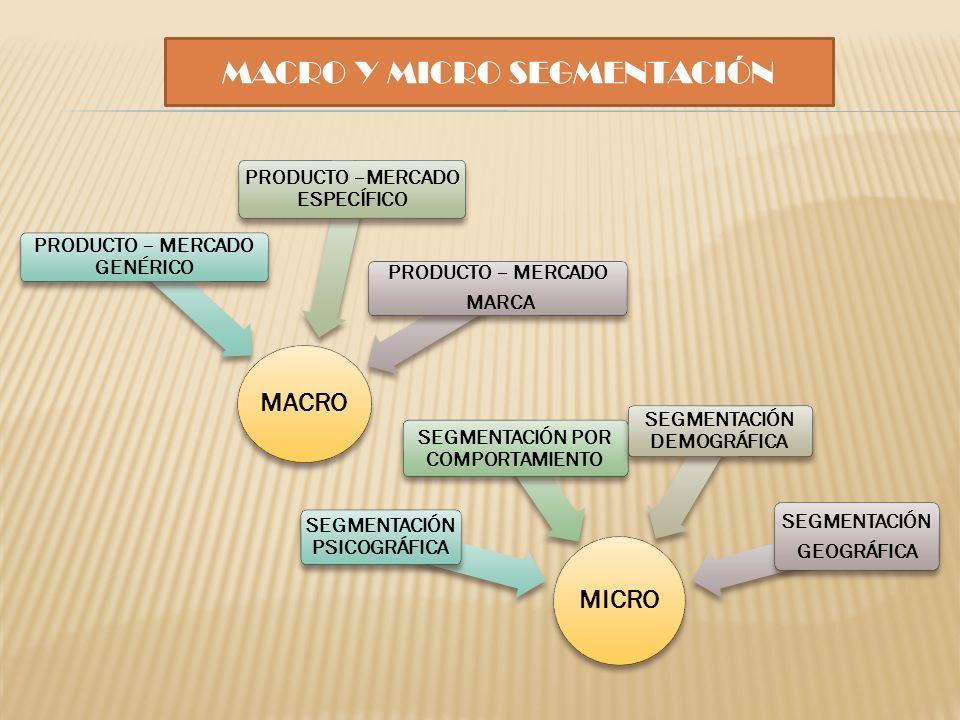 MACRO Y MICRO SEGMENTACIÓN