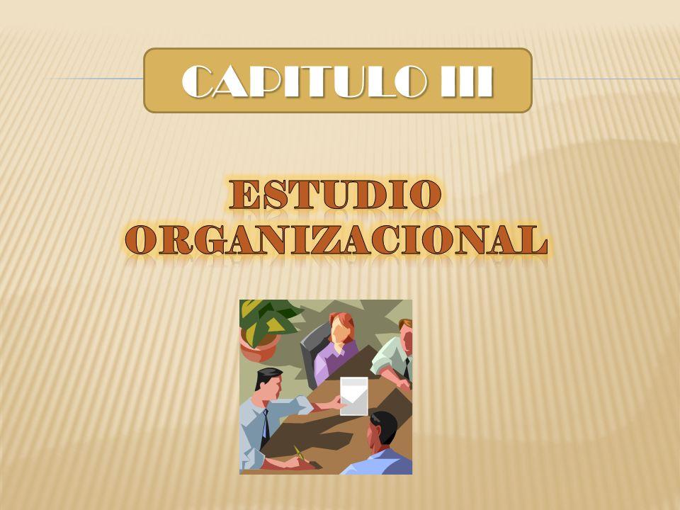 CAPITULO III Estudio organizacional