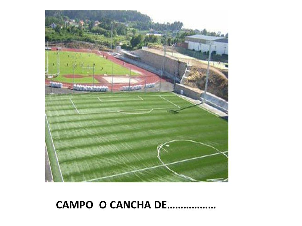 CAMPO O CANCHA DE………………