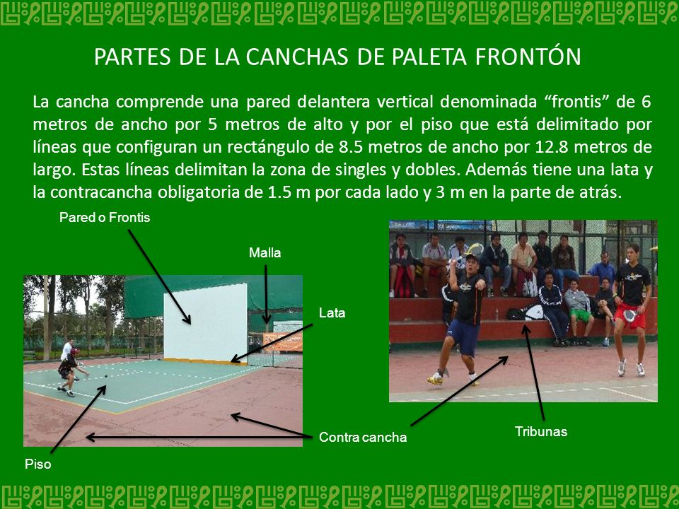 PARTES DE LA CANCHAS DE PALETA FRONTÓN