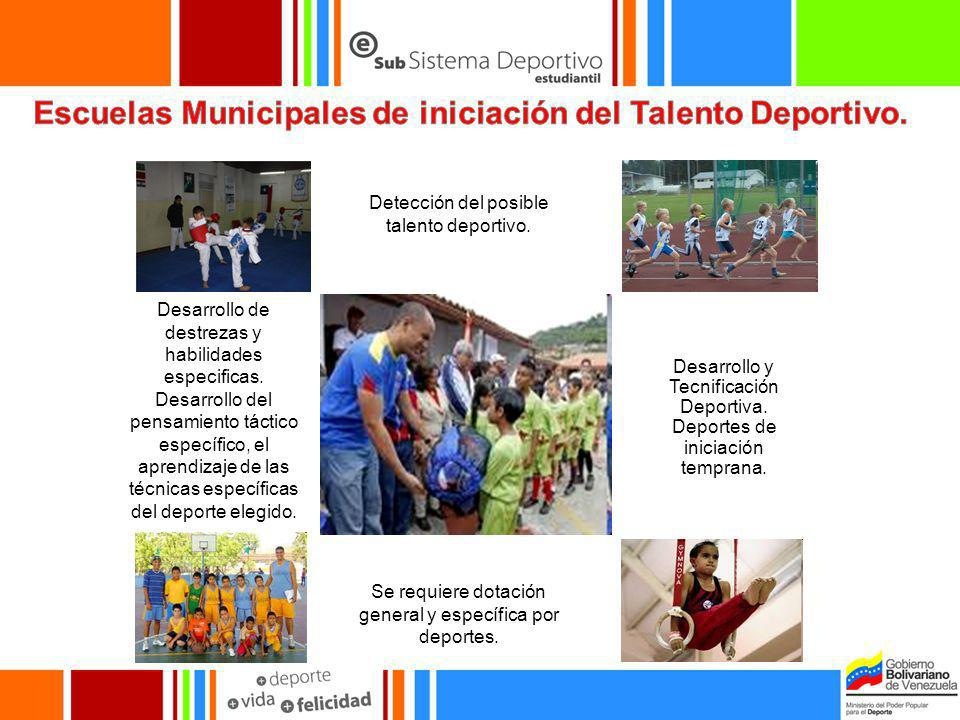 Escuelas Municipales de iniciación del Talento Deportivo.