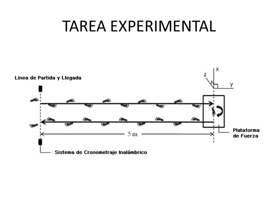 TAREA EXPERIMENTAL