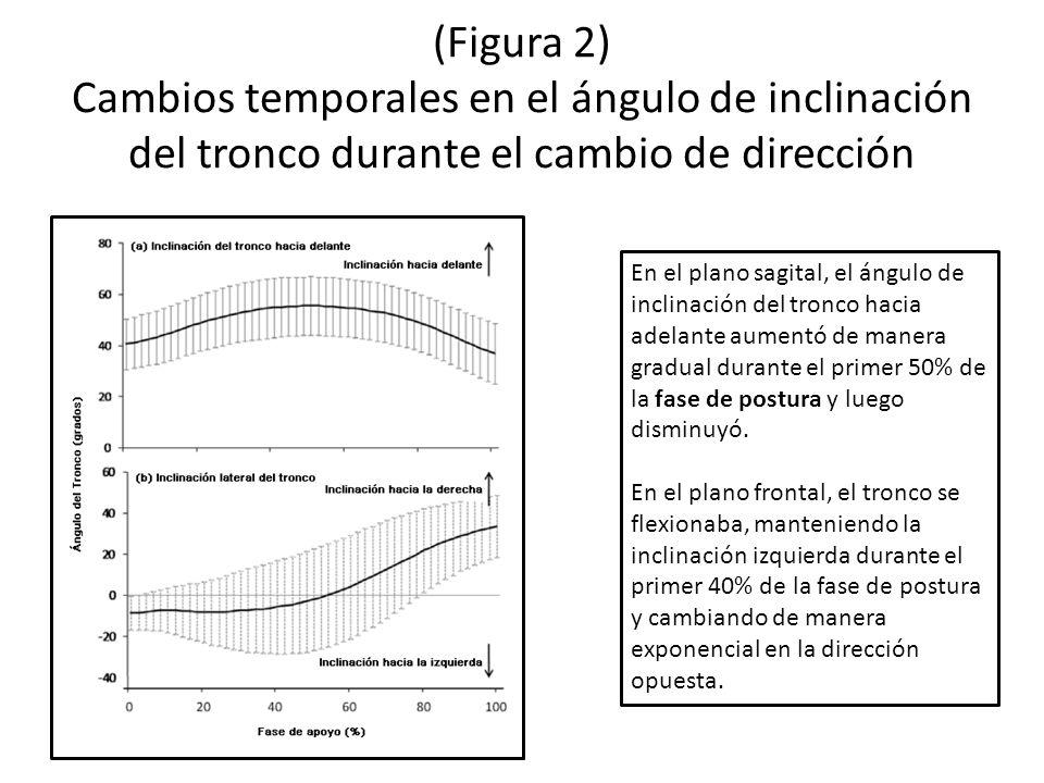 (Figura 2) Cambios temporales en el ángulo de inclinación del tronco durante el cambio de dirección