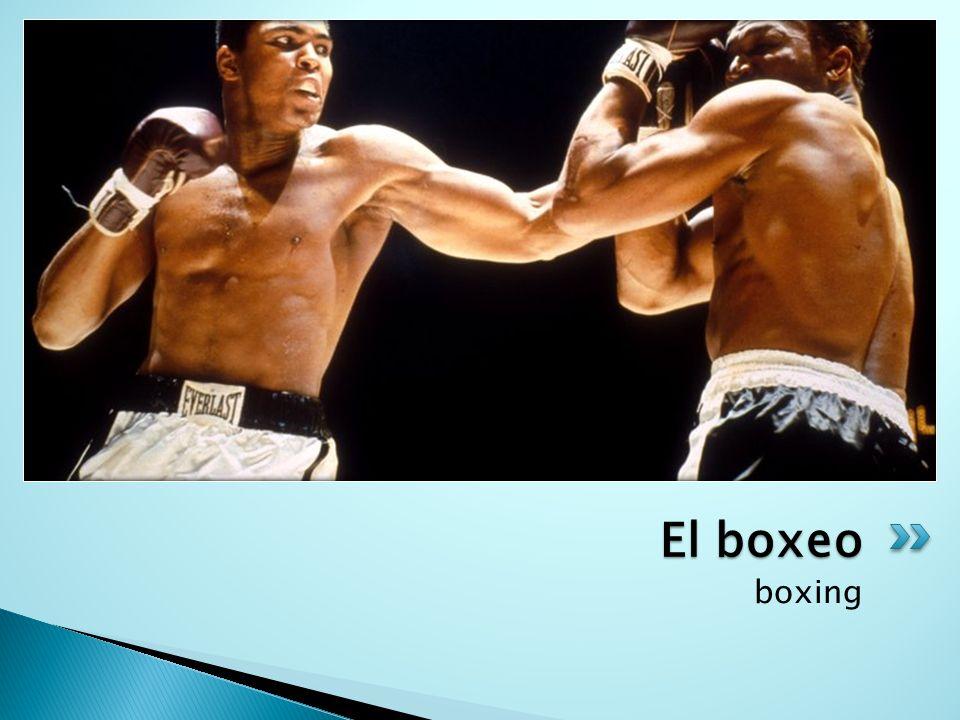 El boxeo boxing