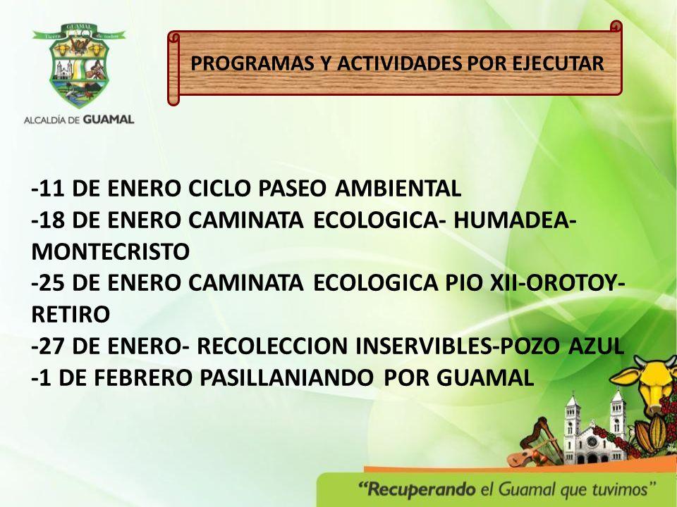 PROGRAMAS Y ACTIVIDADES POR EJECUTAR