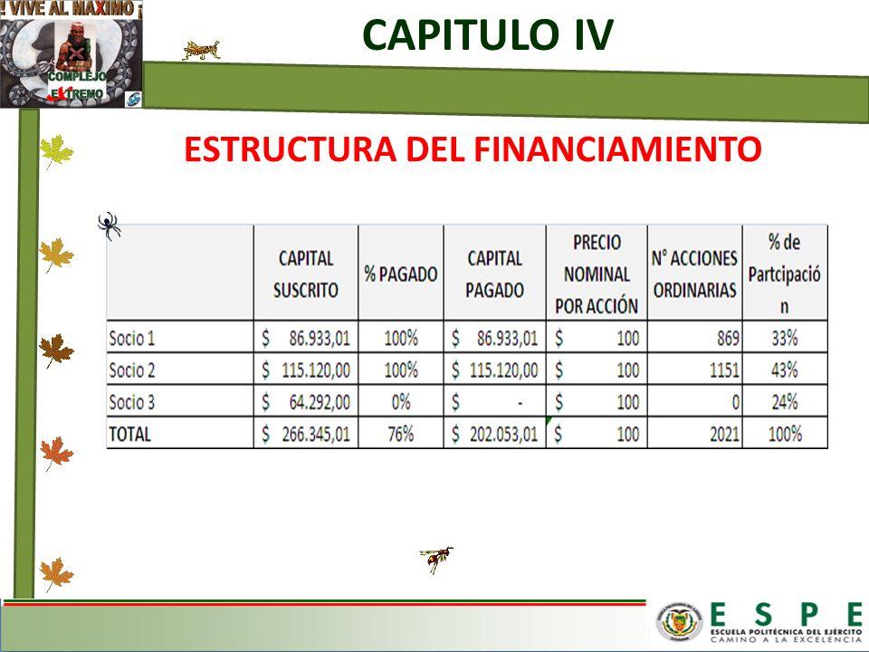 ESTRUCTURA DEL FINANCIAMIENTO