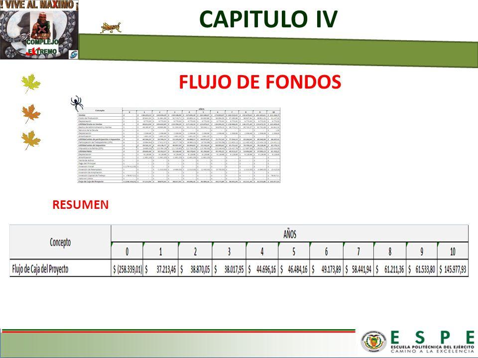 CAPITULO IV FLUJO DE FONDOS RESUMEN
