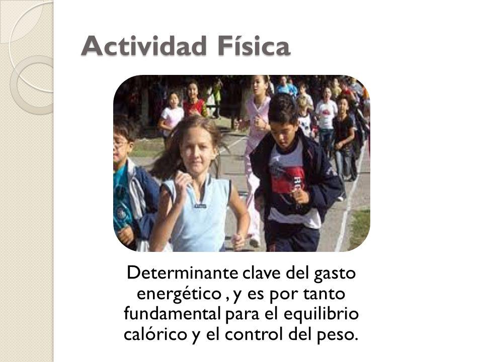 Actividad Física Determinante clave del gasto energético , y es por tanto fundamental para el equilibrio calórico y el control del peso.